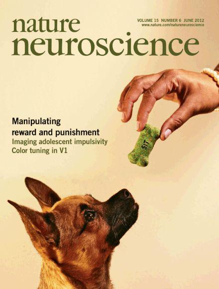 Positive Reinforcement Dog Training Classes