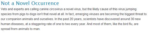 circovirus 02