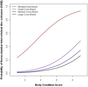 Body conditioning score over 5 is considered overweight. doi:10.1371/journal.pone.0069650.g002